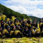 11月8日 脱穀&短パン米の新米を食べる日